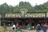 Disney Animal Kingdom :