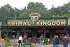 Disney Animal Kingdom :